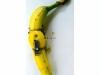 die verbotene Frucht 3