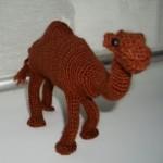 ingrita_camel_1