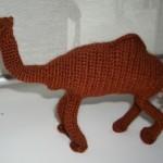 ingrita_camel_2
