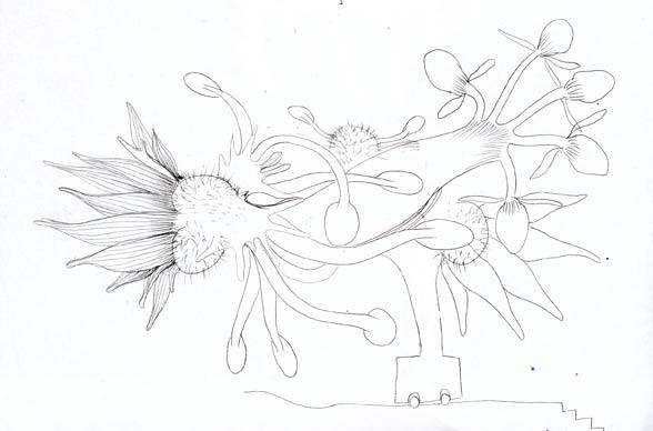 skizze_mai011_3